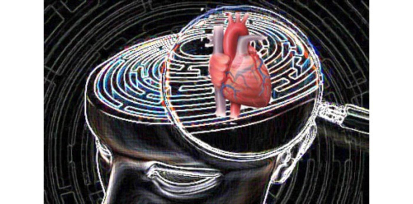 Le dinamiche psicologiche nel paziente cardiologico
