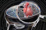 Il vissuto psicologico del paziente cardiologico