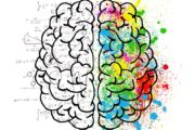 Le reazioni agli stimoli e l'influenza sulla performance cognitiva