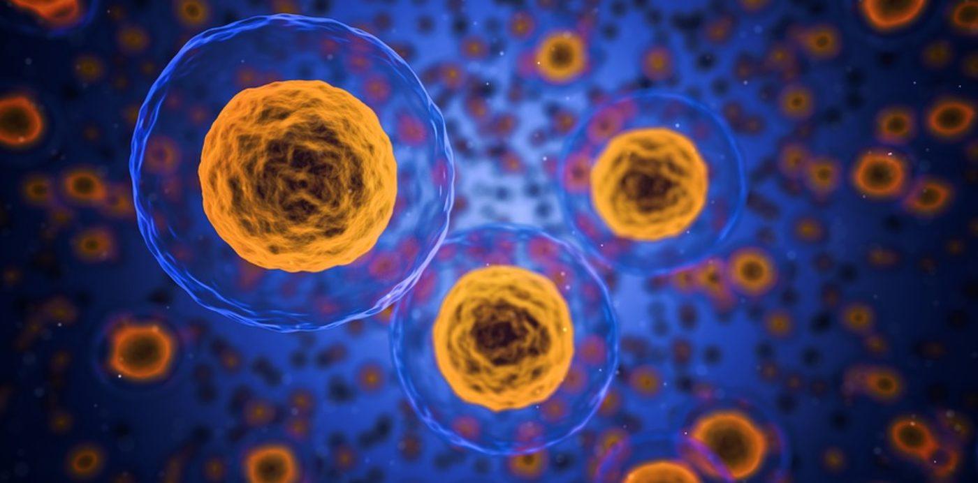 Supporto psicologico per malattia oncologica o patologia organica grave