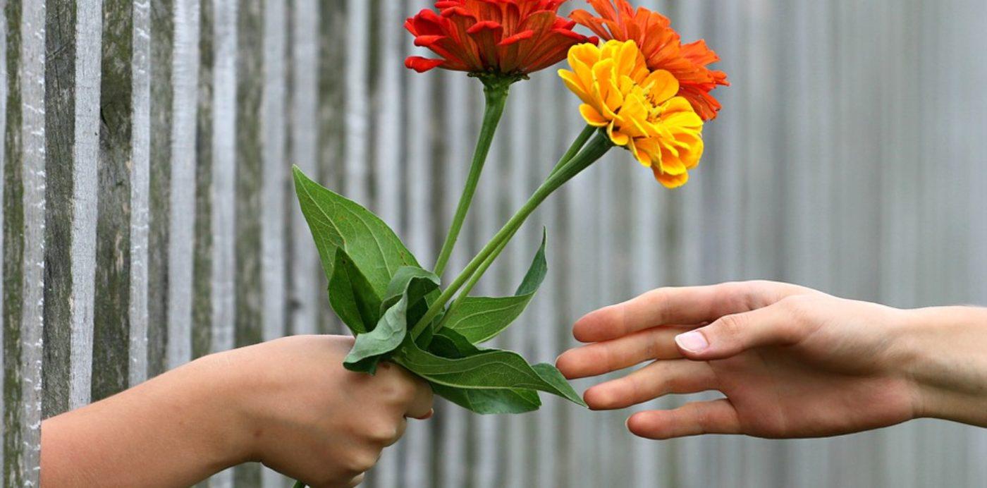 Percorsi per superare le difficoltà relazionali affettive (coppia, famigliari, amicali) o lavorative